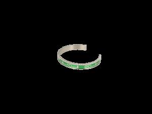 rolex armband groen