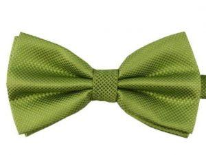 Mr. Pefe Luxe vlinderstrik groen – Satijn geblokt strik
